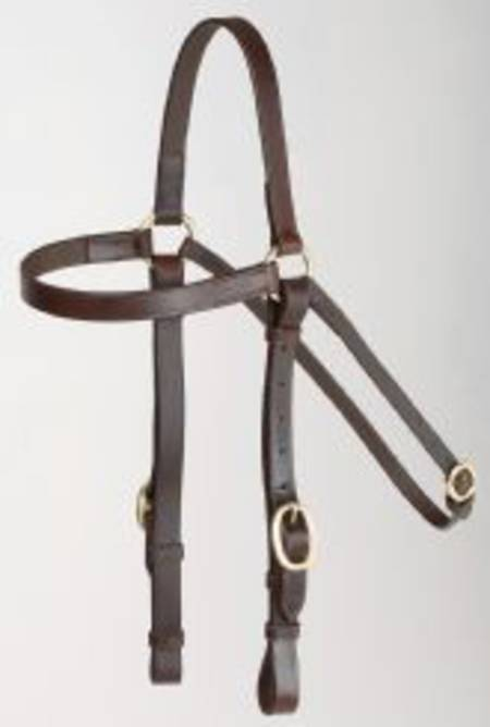 Aintree Barcoo Bridle 20mm +Reins