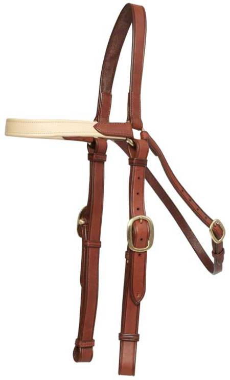 Oregon Padded Brow Barcoo Bridle Head