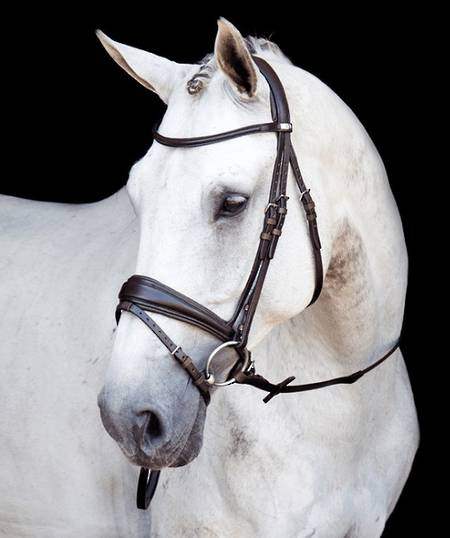 Stubben 2800 Switch Bridle