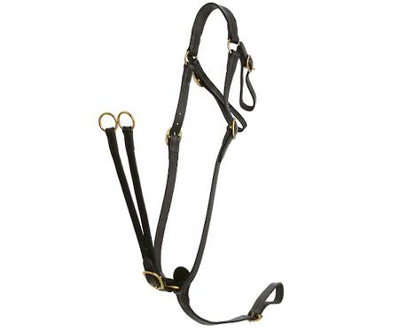 Flair Martingale-Breastplate