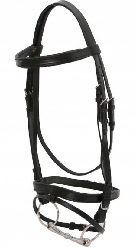 Blue Tag Hanoverian Bridle-Padded Brow