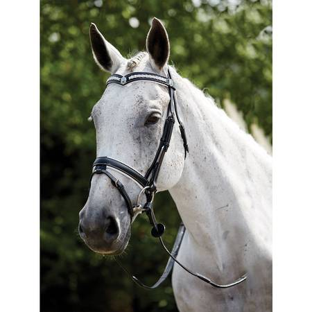 Kincade White Plaited Hanoverian Bridle