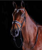 Collegiate Patent Pearl Flash Bridle