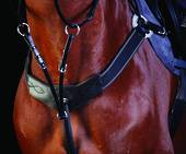 Collegiate Three Point Breastplate
