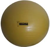Arion Maximus Power Play Ball