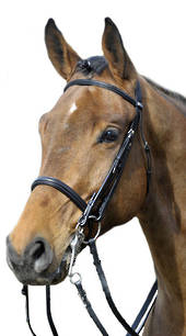 Stubben 1011 Waterford Double Bridle